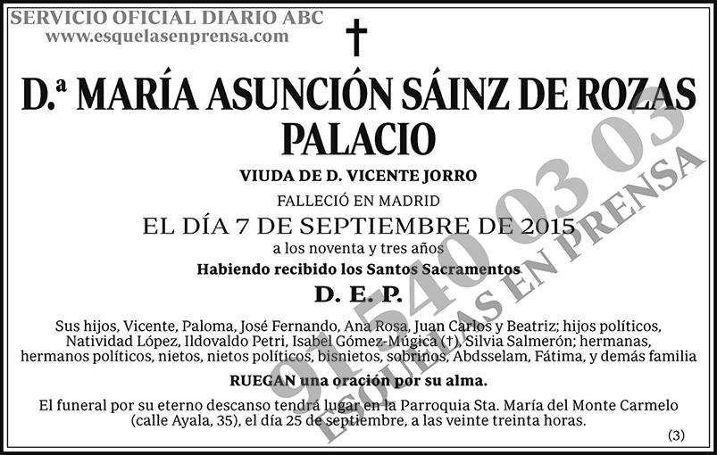María Asunción Sáinz de Rozas Palacio